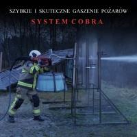 System COBRA